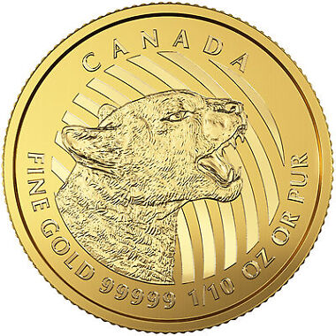 2016 Canadian Gold Growling Cougar
