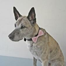 Mini Pink Gingham Dog Bow Tie for Dogs(HC06) -Free Shipping