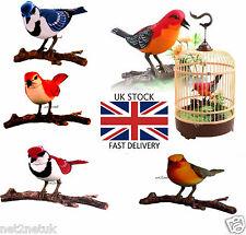 Magnifique oiseau chantant électronique jouet chant émouvant oiseau en cage pet