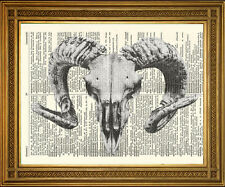 GOAT SKULL DICTIONARY PRINT: Pagan Black and White Death Art, FREE P&P in UK!