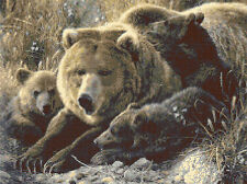 """Grizzley Bear Family Full Counted Cross Stitch Kit Animals/Insects   16"""" x 12"""""""