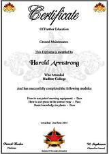 Further Education Certificate  A4  ( Novelty )
