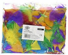 Creation Station Coloured Feathers CT3165 Approx 28 grams