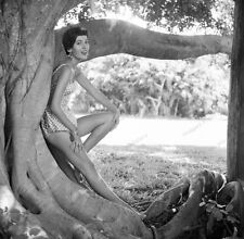 8x10 Print Sexy Model Pin Up 1950's Brunette Nudes #1011795