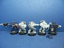 5 Mann Protektorgarde der Space Marines - Finecast
