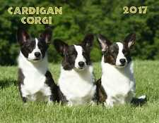 2017 16 MONTH CARDIGAN WELSH CORGI CALENDAR