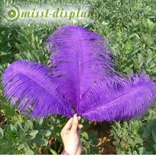 Wholesale 6-8Inches  Ostrich Feather Wedding Party Decoration Colour optional