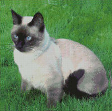 "Siamese Cat In Grass Counted Cross Stitch Kit 12"" x 11.75"" 30.3cm x 29.8cm"