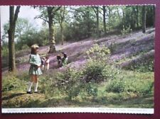 POSTCARD KENT CANTERBURY - BLUEBELL TIME