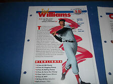 SPORTS HEROES,FEATS & FACTS PHOTO CARD LOT OF 10 BOSTON RED SOX/TED WILLIAMS/YAZ