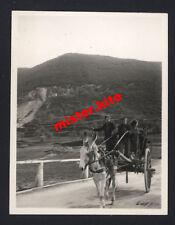 Caserta-Kampanien-Italien-Esel-Kinder-Kutsche-wehrmacht-2.WK-4
