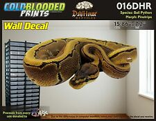 Removeable Wall Decal Snake Ball Python Cold Blooded Prints Sticker 016DHR