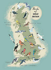 Birds of Great Britain Map Great British Native Birds Metal Tin Sign New 15x20cm