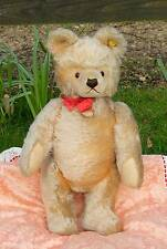 "LARGE OLD 20"" STEIFF BEAR, with CHEST LABEL,  BUTTON IN EAR & STOCK TAG SUPERB"