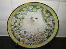 CATS AMONG THE FLOWERS  PLATE  - MR.JONES IN DAISIES -DANBURY MINT