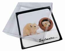4x Hamsters in Pot Soulmates' Picture Table Coasters Set in Gift Box, SOUL-87C