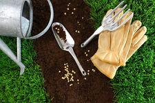 Kit jardin potager lot de + de 2000 Graines legumes BIO semis plantes anciens