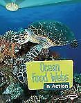 Ocean Food Webs in Action (Searchlight Books) (Searchlight Books: What-ExLibrary