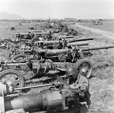 WW2 Photo WWII Captured Axis Artillery and Anti-Tank Guns Tunisia 1943    / 4153