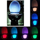 LED Sensor Motion Activated Bathroom Toilet Seat Bowl Battery Night Light 8Color