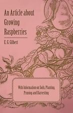 An Article about Growing Raspberries with Information on Soils, Planting,...