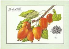 Trees Postcard - Crab Apples - [Malus Species and Varieties]   ZZ399