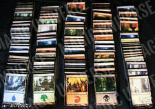 200 MTG BASIC LAND MAGIC THE GATHERING CARDS COLLECTION