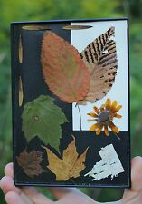 Nature Art Pressed Leaves, Wildflowers Bark Handmade Gift Mom Dad Holiday framed