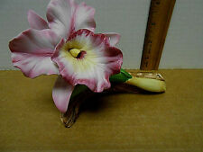BEAUTIFUL CATTLEYA ORCHID  PORCELAIN FLOWER FIGURINE BY ANDREA BY SADEK
