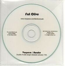 (AB575) Fat Olive, Vaquero / Awake - DJ CD