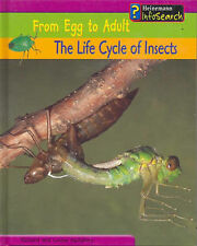 The Life Cycle of Insects (From Egg to Adult) Richard Spilsbury, Louise Spilsbur