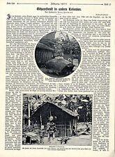 Forstmeister Franz Hartmann Götzendienst in unseren Kolonien Deutsch- Afrika1908