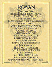 Rowan Tree Parchment Book of Shadows Page!