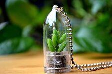 Coral Cactus Plant Necklace. Cactus Terrarium Gift.