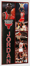 MICHAEL JORDAN DOOR SIZE EARLY 90'S NBA POSTER VINTAGE AND RARE!