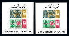 [48644] Qatar 1965 Telecommunication Space Olympic ring Perf and Imperf MNH