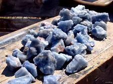 1000 Carat Lot of Natural BLUE CALCITE - PLUS FREE GIFTS  Metaphysical Healing