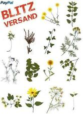 Herbarium 15 Pflanzen zum Auswählen - Lieferdauer i. d. R. 1 Tag.