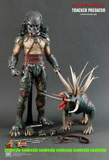 "Hot Toys Predators Tracker Predator With Hound 1/6 14"" figure Sideshow MIB"