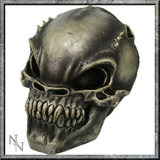 ALIEN SKULL UNEARTHLY VISITOR RESIN NOVELTY FUN NEMESIS NOW NEW AND BOXED