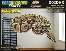 Removeable Wall Decal Snake Ball Python Cold Blooded Prints Sticker 002DHR