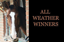 All Weather Winners Racing Betting Gambling System for Betfair Make & Win Money!