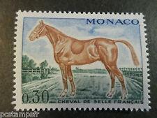 MONACO 1970, timbre 833, CHEVAL DE SELLE FRANCAIS, neuf**, VF MNH STAMP, HORSE