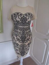 BNWT AMY CHILDS COLLECTION CREAM NET & BLACK LACE EFFECT MIDI DRESS SIZE 14