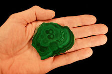 "Bulls Eye Malachite Polished Slice 3"" Natural Mineral Rock Mineral Specimen"