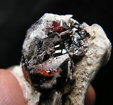 Gw - LARGE GEM SPESSARTITE Garnet on STAR MUSCOVITE - Shengus, PAKISTAN