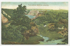 Old Postcard, F.F & Co, The Downs, Clifton, Bristol