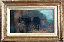 ANTIQUE EARLY British School Original Oil PAINTING of Horse Eating Hay, c.1800's