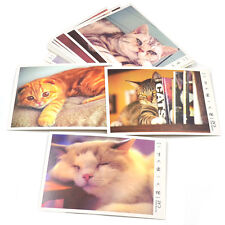 Cat Kitty Photo Print Postcards Greeting Card Travel Cute Gifts 32pcs/Set New