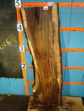 "#9126   1/1/8"" THICK  black walnut live edge slab"